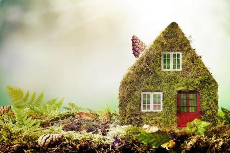 6 moduri eficiente de a trai un stil de viata ecologic in 2020